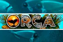 Игры онлайн в казино Вулкан: Orca